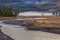 Soda Butte Ck Fog (chasingthewildoutdoors) Tags: chasingthewildoutdoors yellowstone yellowstonepark ynp fall fog forest morning river water trees canon 5dmkii landscapes beauty
