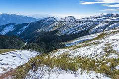 Harry_30995,,,,,,,,,,,,,,,,,,,,Winter,Snow,Hehuan Mountain,Taroko National Park,National Park (HarryTaiwan) Tags:                    winter snow hehuanmountain tarokonationalpark nationalpark     harryhuang   taiwan nikon d800 hgf78354ms35hinetnet adobergb  nantou mountain
