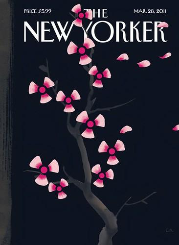 New Yorker darkspring