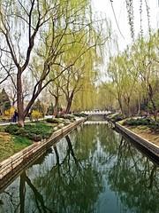 beijing_33 (SamOphoto2011) Tags: china beijing g11