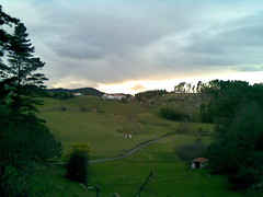 20090205(010) (naialaka) Tags: natura basoa belarra baserria berdea paisajea