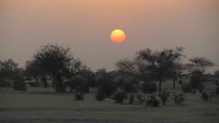 West Africa-2523