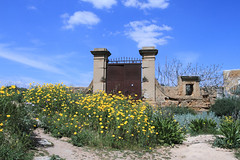Realmonte (Ag) (Vicinzinu) Tags: sicilia realmonte