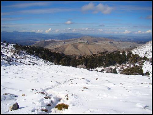 Ruta Torrecilla (17)