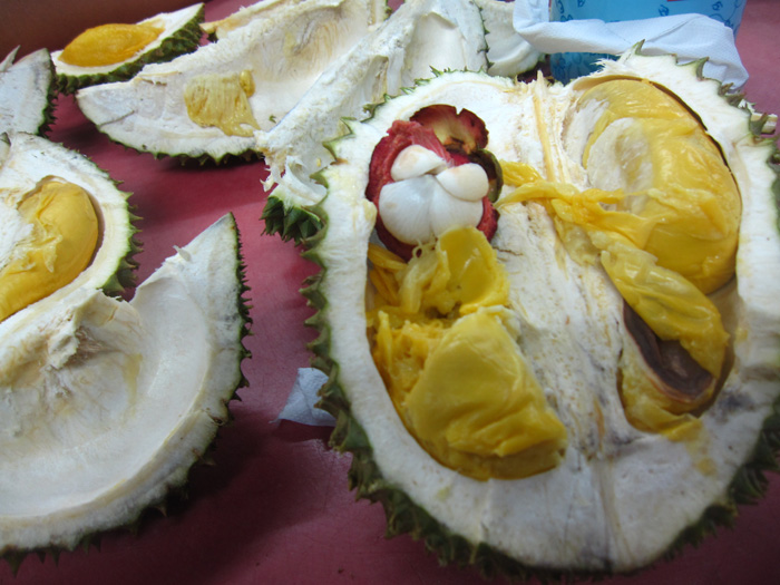 5591194045 f8dde927d5 o Durian Buffet: All You Can Eat of the World's Most Body Altering Delicacy