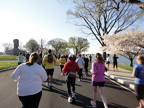 Cherry Blossom 10-miler