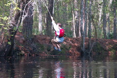 Matt Swinging