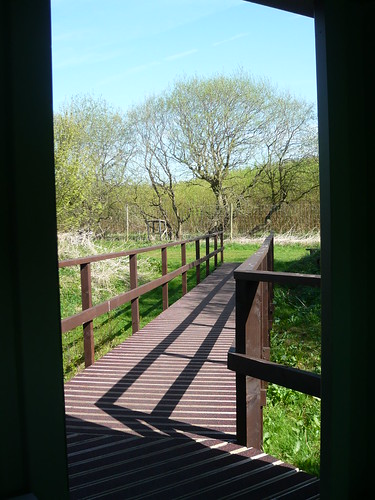 Rodley bird hide