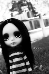 Sparrow Sad Eyes (Voodoolady ) Tags: bw sweater eyes sad sparrow susie blythe lunitas happibug