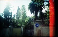 jardi al barri (lereile lereile) Tags: barcelona lca lomografía lomography forzado pushed
