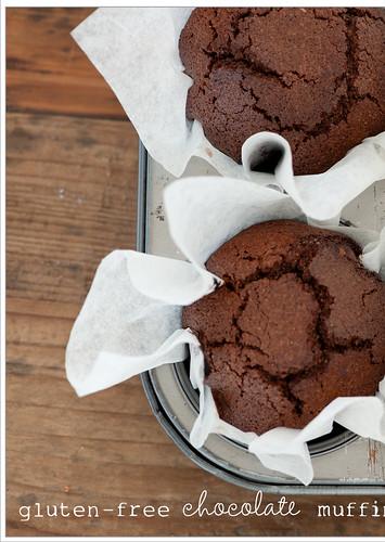 gluten-free chocolate muffin recipe