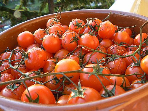 tomates crues 2.jpg