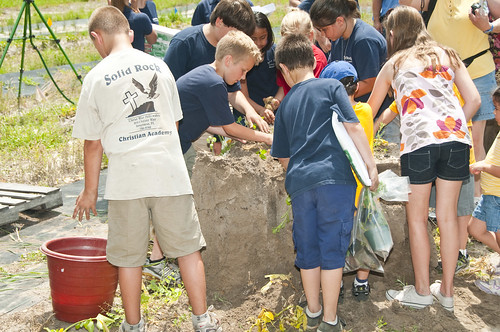 School groups and other participants planted new additions to the pollinator garden.