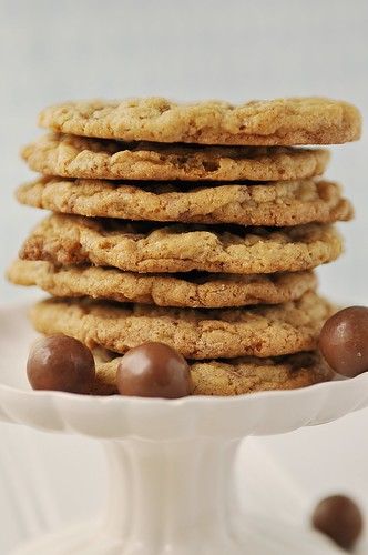 Cookie recipes with milk