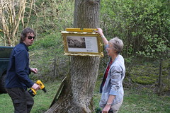 Ben and Ros putting up the exhibition (Enlightenment!) Tags: painting nationaltrust dovedale eighteenthcentury buxtonmuseum picturesinthelandscape dovedalebuxtonmuseum