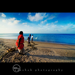 Fishing the Sea @ Ariyaman Beach (ayashok photography) Tags: blue sea sky woman cloud india man men net water asian fishing sand nikon asia indian dude desi seashore tamilnadu rameshwaram bharat bharath desh barat barath ayashok nikond300 tokina1116mm ariyamanbeach aya2412v2