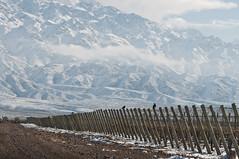 Capacitación para el sector vitivinícola