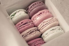 Macarons (lejaclyn) Tags: pink food rose yellow 35mm germany french dessert deutschland beige nikon sweet box pastel cream cologne kln foodporn pistachio pastry sweets pastries confectionery laduree confection macaroons buttercream macarons macaron ptisserie ladure d3000 nikond3000