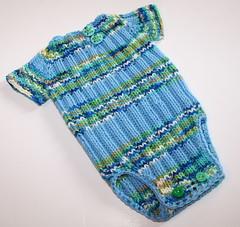 Dogwood Ribby Oneise - Knitter's Version