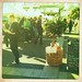 Growers' Market, Pyrmont