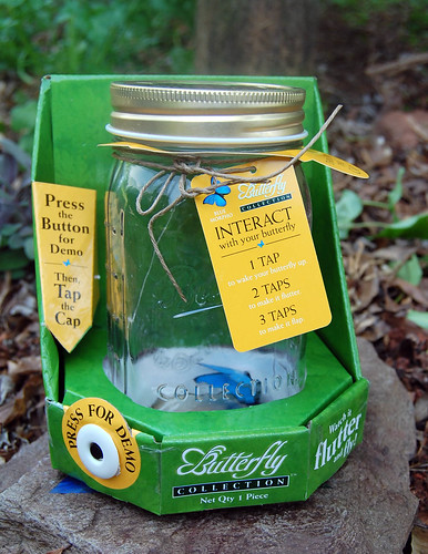 butterfly_collection_jar