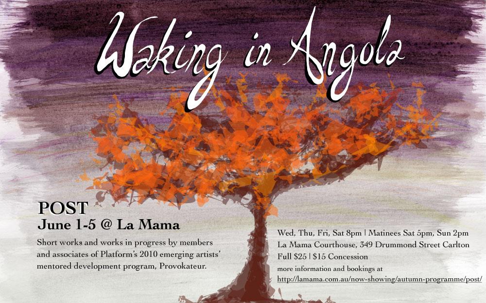 WakingInAngola_flyer