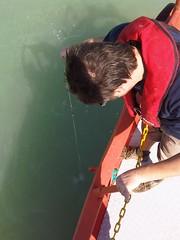 Submerged Seichi Disk