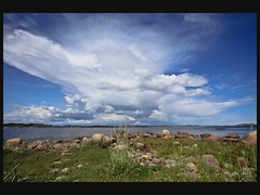 hasla_tot (May Elin Aunli) Tags: norway norge grimstad hasla haseltangen