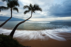 Ma'alaea Morning (Mitch Seaver) Tags: ocean trees sky seascape tree beach nature clouds sunrise landscape dawn coast surf waves scenic palm palmtree coastline maalaea hawaiimaui bestcapturesaoi doublyniceshot doubleniceshot tripleniceshot elitegalleryaoi mygearandme mygearandmepremium mygearandmebronze mygearandmesilver mygearandmegold mygearandmeplatinum mygearandmediamond artistoftheyearlevel3 4timesasnice 6timesasnice 5timesasnice 7timesasnice