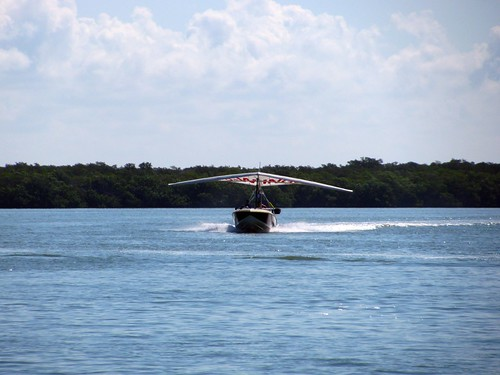 IMG_5757-Estero-Bay-flying
