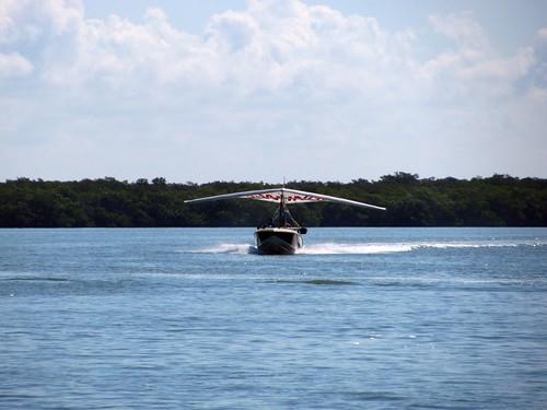 IMG_5757-Estero-Bay-flying