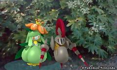 20110630_ポケモン図鑑3DS