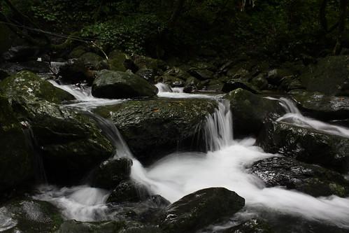 新北市三峽雲森瀑布_44_2011.06.28