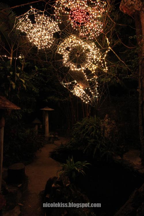 crazy house garden
