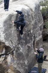 nicole-highstep