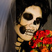 Skull headshot