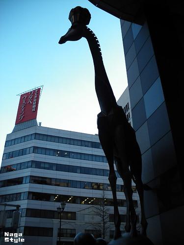 東京のキリン