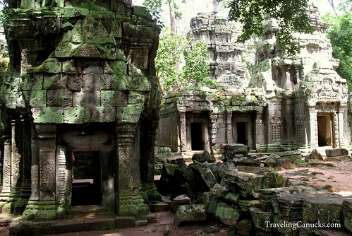 Temples in the Jungle of Angkor