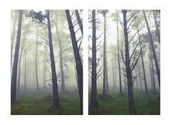 REALIDAD SUBJETIVA (Cintia Mars) Tags: landscape paisaje galicia galiza fotografaartstica fotografasubjetiva canon5dmarkii paisajeartstico paisajesmisteriosos