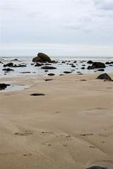 14-4-2011 (Copperhobnob) Tags: sky shells seaweed rock clouds sand stcombsbeach