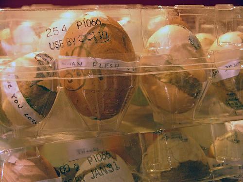 Poem Eggs MayDay 2011