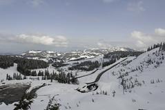 Super Weekend - Mt. Washington & Tofino