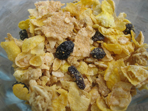 Post Honey Bunches of Oats Raisin Medley Closeup