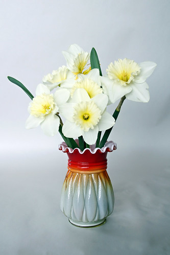 birthday daffodils by Elli :-)