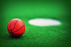 Basketgolf [37~365] (Stacey Price (Roxy_77)) Tags: newzealand basketball birdie golf boogie golfball miniputt pitchandputt 18holes rototuna roxy77