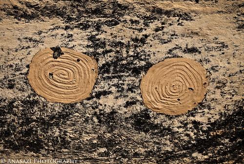 Mud Spirals