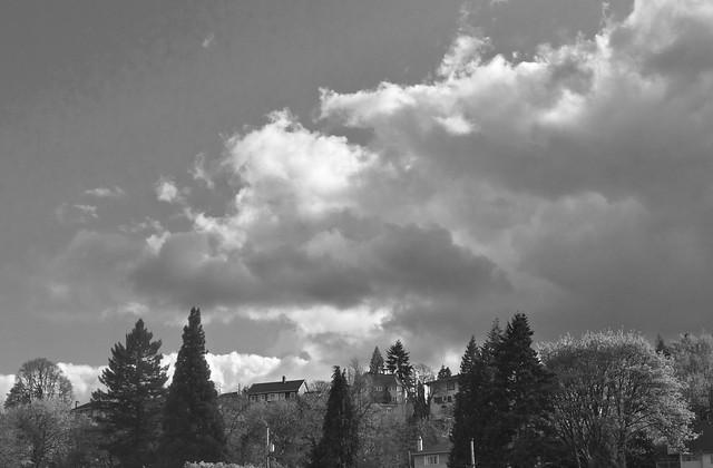119/365 ~ West Hills