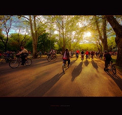 here comes the sun (ildikoneer) Tags: road park trees shadow urban sun sunshine bicycle canon eos hungary d budapest sigma 40 mm mass 1020 critical vrosliget digitalcameraclub colorphotoaward