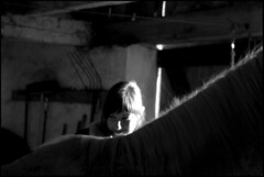 Julia (feldweg) Tags: bw horse girl caballo cheval julia cavallo pferd hest kon agirlandherhorse
