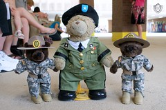 Day 105 - General Sarge with Drill Sgt Bears